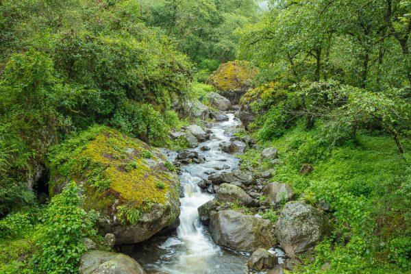 Parque Nacional Aconquija - Florian von der Fecht - enero 2019 - 285